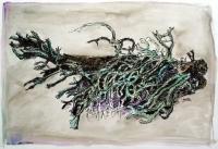 zweig-mit-flechen-federzeichnung-aquarelliert